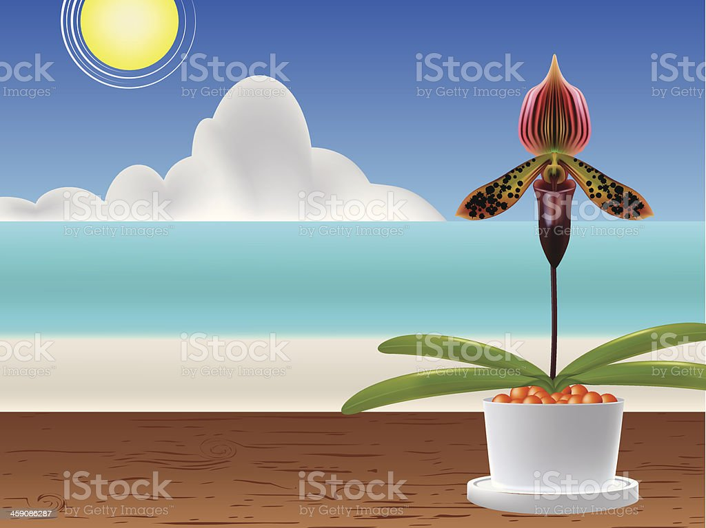orchid4 royalty-free stock vector art