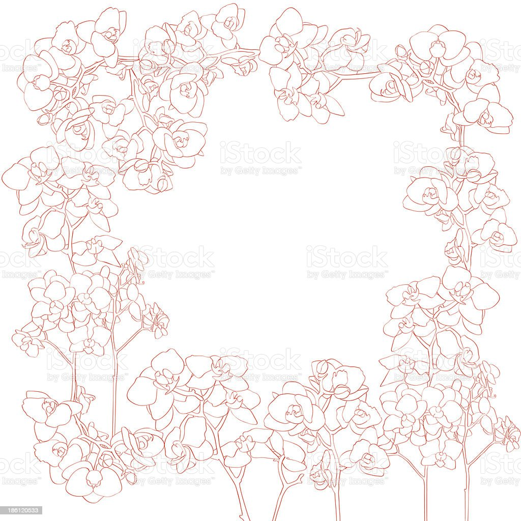 Orchids frame royalty-free stock vector art
