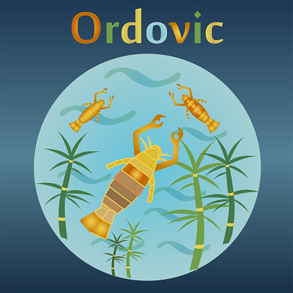 Ordovic aeon in the history of the Earth.