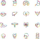The vector files of organ icon set.