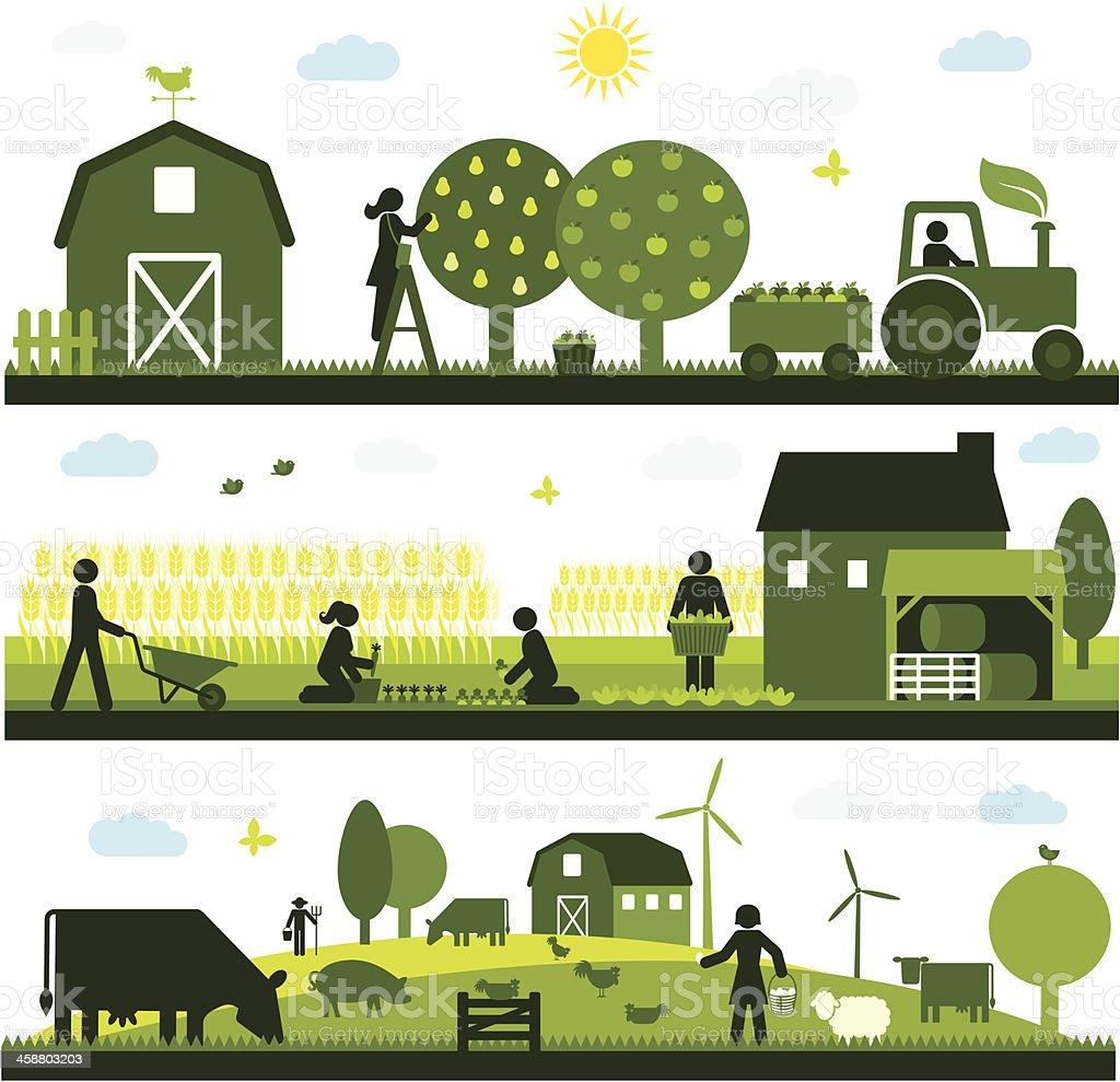 A agricultura orgânica - ilustração de arte em vetor