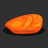 Organic amber stone. Vector illustration.
