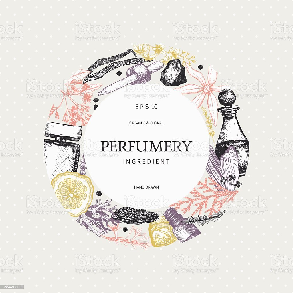 Organic And Floral Perfume Ingredients Background Stock Illustration -  Download Image Now