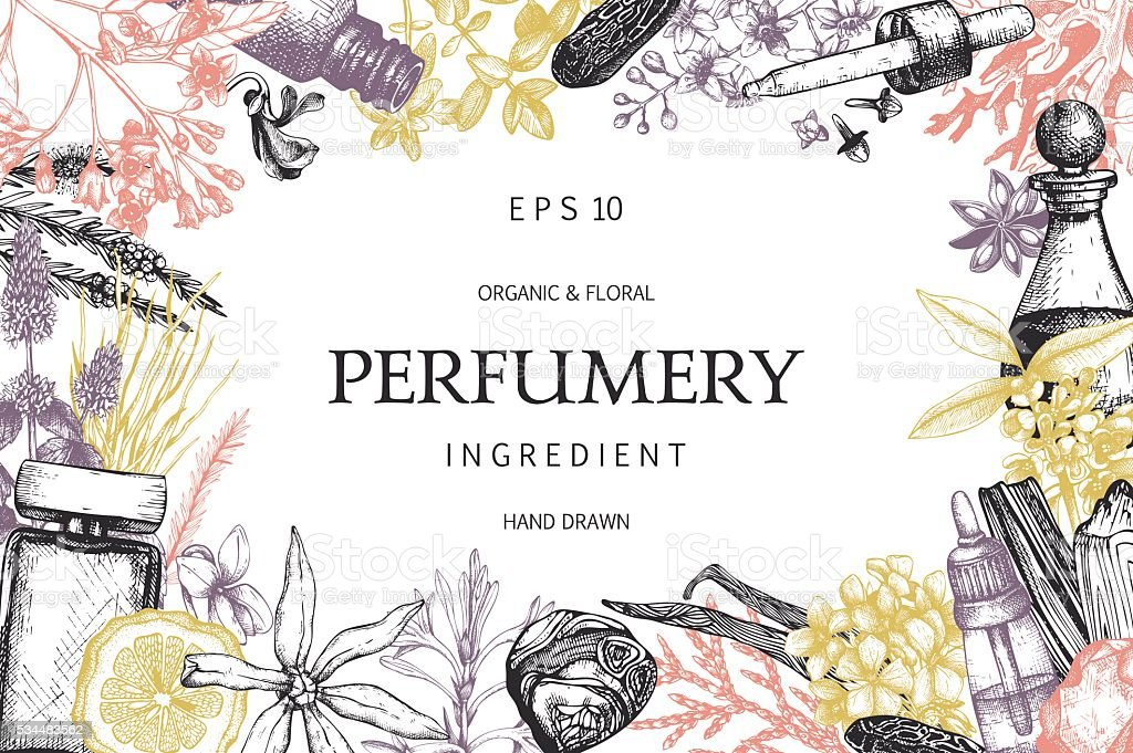 Organic And Floral Perfume Ingredients Background Stock