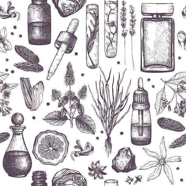 Organic and floral perfume ingredients background. Seamless pattern with hand drawn perfumery and cosmetics materials sketch. Vintage illustration lavender plant stock illustrations