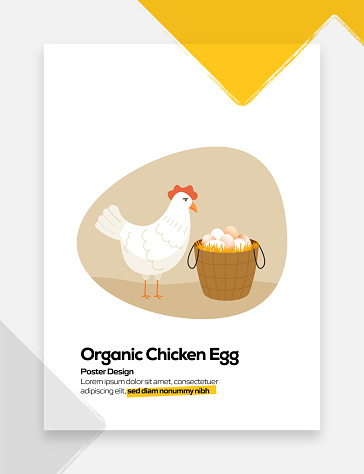 Organic Chicken Egg Concept Flat Design for Posters, Covers and Banners. Modern Flat Design Vector Illustration.