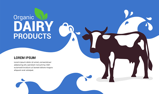 Organic dairy products illustration with cow