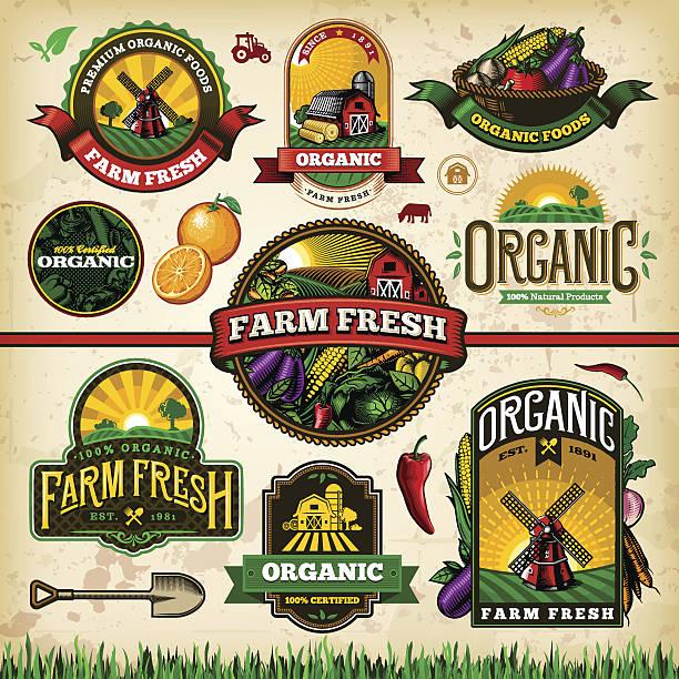 illustrazioni stock, clip art, cartoni animati e icone di tendenza di fattoria biologica fresca etichetta set 2 - organic food