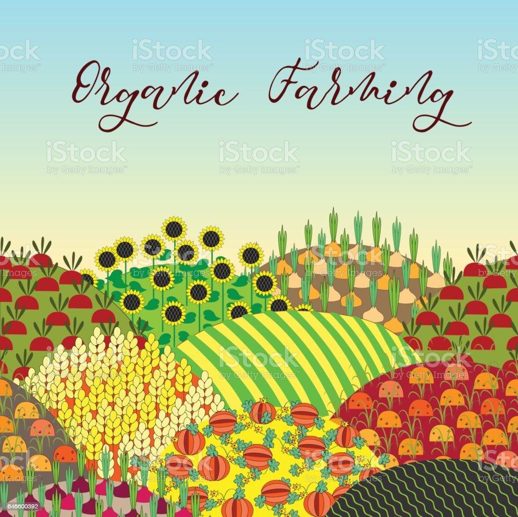 Fondo de agricultura orgánica. Patrón con el paisaje de campos de Mies. - ilustración de arte vectorial