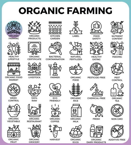 Organic farming concept detailed line icons vector art illustration