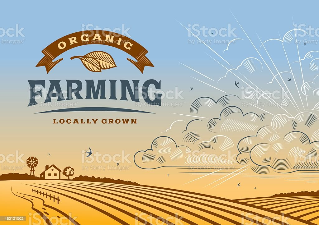 Organic Farming Landscape vector art illustration