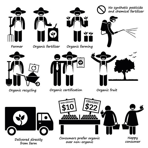 biologische landwirtschaft gemüse obst stick figure pictogram icons - stoffmarkt stock-grafiken, -clipart, -cartoons und -symbole