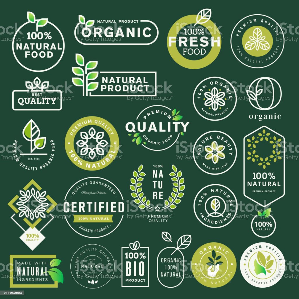 Conjunto de ícones de comida e bebida orgânicos e elementos - ilustração de arte em vetor