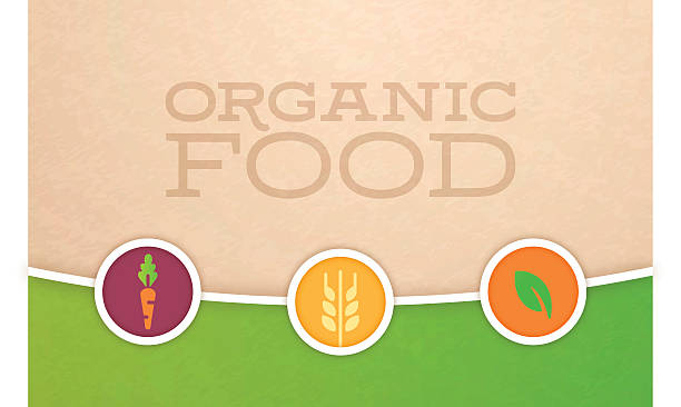 Organic Food and Farming Background Organic food and farming background concept with space for your copy. EPS 10 file. Transparency effects used on highlight elements. agricultural fair stock illustrations