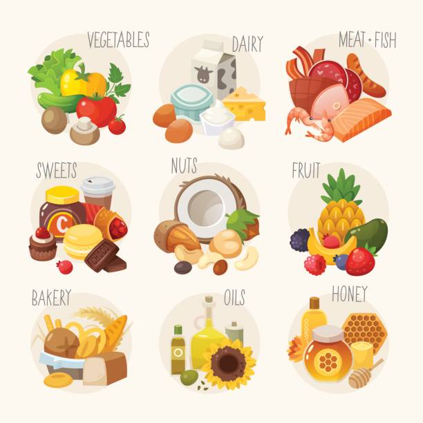 Organic food categories. vector art illustration
