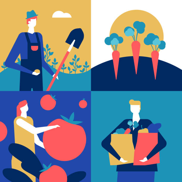 Organic food - flat design style colorful illustration Organic food - flat design style colorful illustration. A composition with male, female characters, farmer with a spade, woman holding a tomato, a boy with shopping bags full of vegetables, carrots farmer stock illustrations