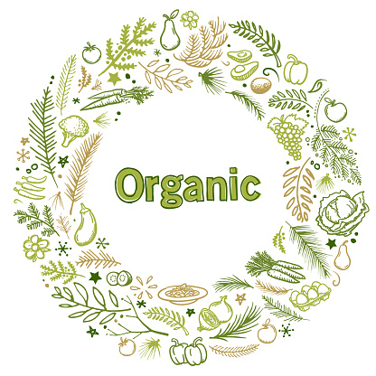 Organic food hand drawn vector illustration wreath for use as template for market garden documents, cards, flyers, banners, advertising, brochures, posters, websites