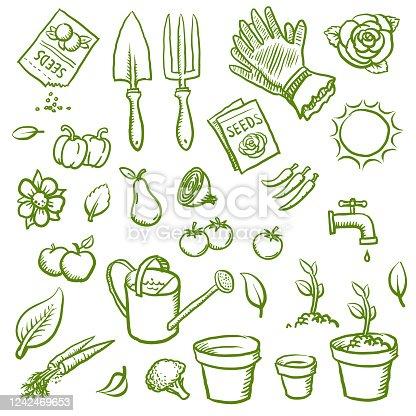 Hand drawn organic gardening vector illustrations