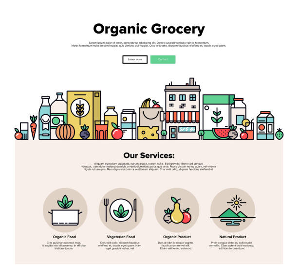 Organic grocery flat line web graphics One page web design template with thin line icons of organic food and fresh natural products, small city store with vegetarian groceries. Flat design graphic hero image concept, website elements layout. farmers market illustrations stock illustrations