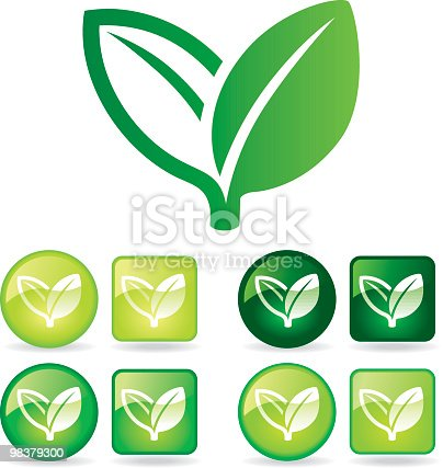 Organic Growth Stock Vector Art & More Images of Bud 98379300