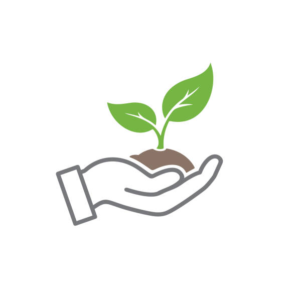 Organische Ikone – Vektorgrafik