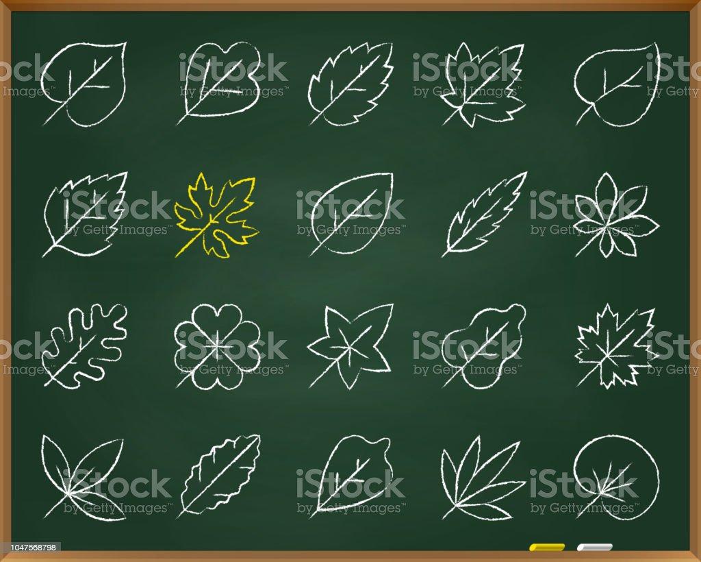 Organic Leaf chalk draw line icons vector set vector art illustration