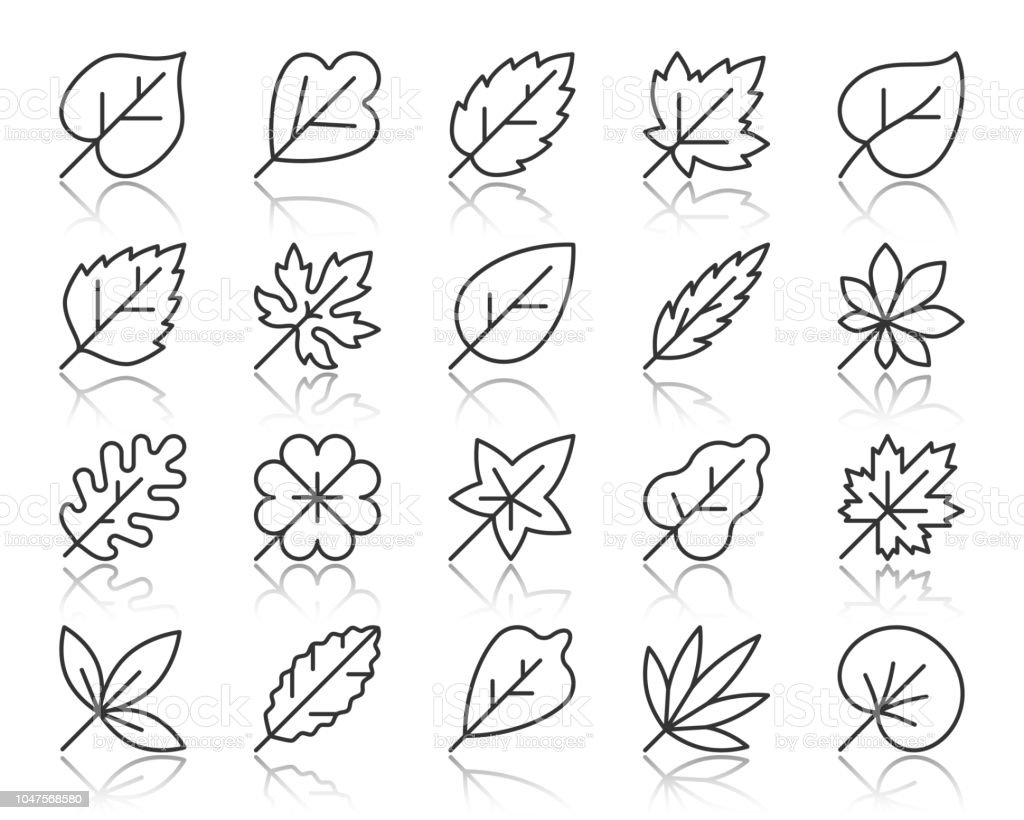 Organic Leaf simple black line icons vector set vector art illustration