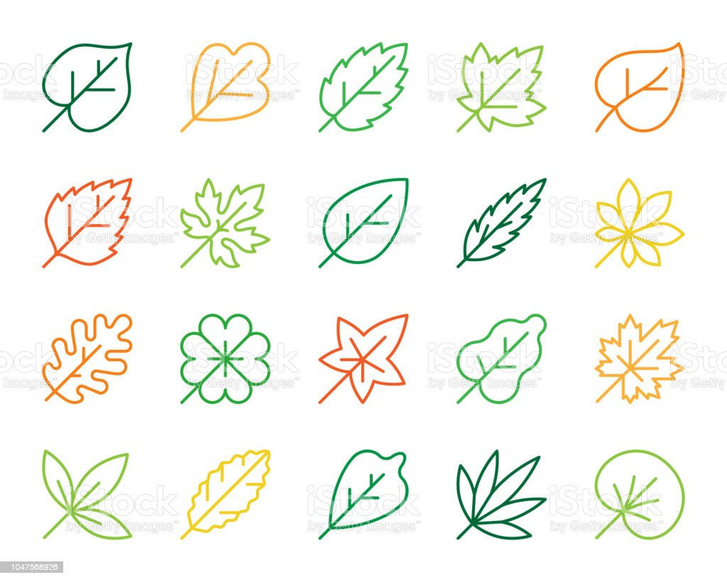 Organic Leaf simple color line icons vector set vector art illustration