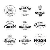 Organic natural and healthy farm fresh food retro emblem set. Olive tree vintage old logo badge isolated on white background.\nPremium quality green plant organic fashion logotype illustration design.