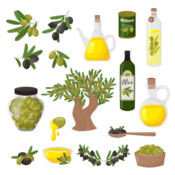 Organic olive products flat vector illustrations set vector art illustration