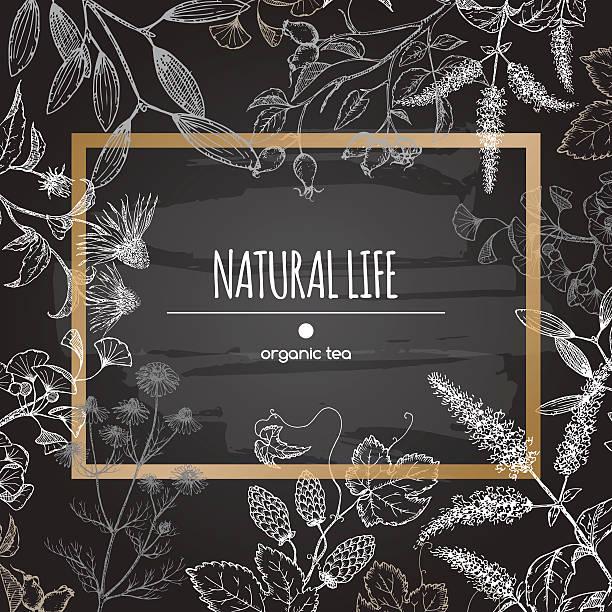 illustrazioni stock, clip art, cartoni animati e icone di tendenza di etichetta di tè biologici decorate con erbe su sfondo di lavagna. - camellia sinensis