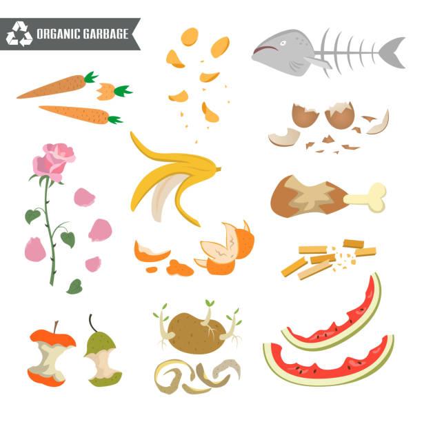 bildbanksillustrationer, clip art samt tecknat material och ikoner med organiska papperskorgen på vit bakgrund. - food waste