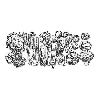 Organic Vegetables Drawing