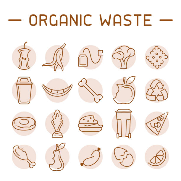 Organic waste icons set Organic waste icons set. Linear style vector illustration leftovers stock illustrations