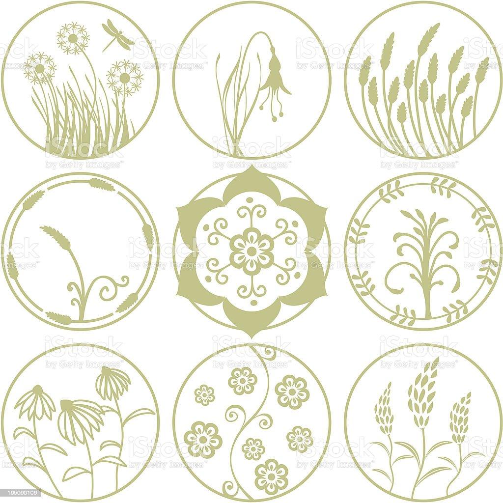 Organics - Round Designs (Vector) vector art illustration