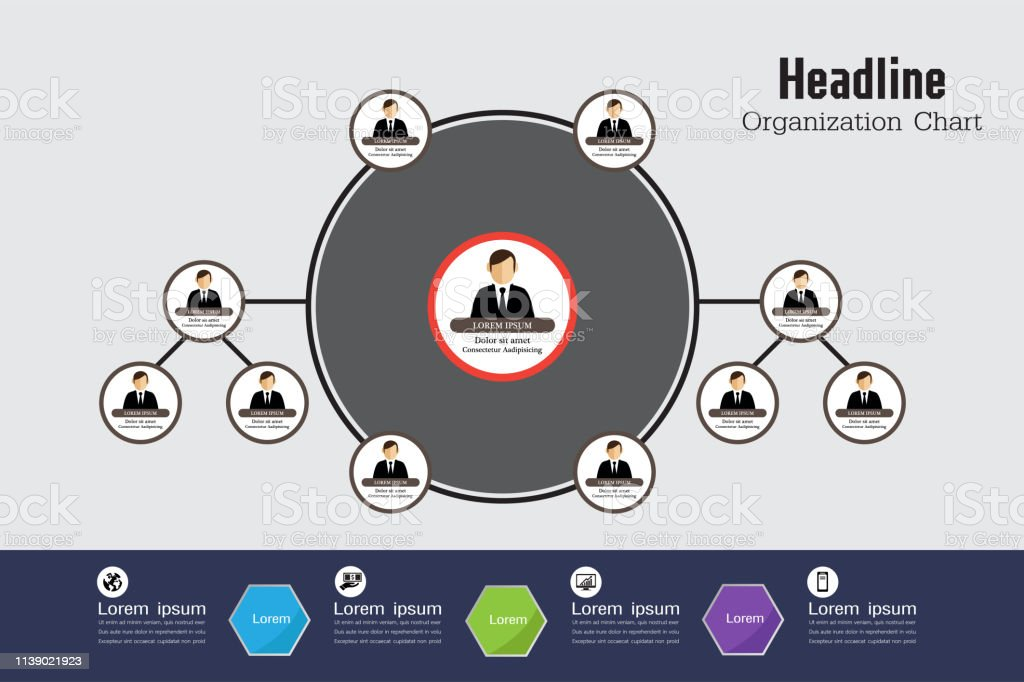 Organization Chart Infographics,vector design