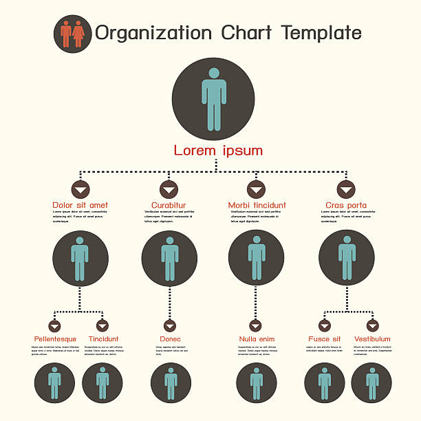 Best Organization Chart Illustrations, Royalty-Free Vector