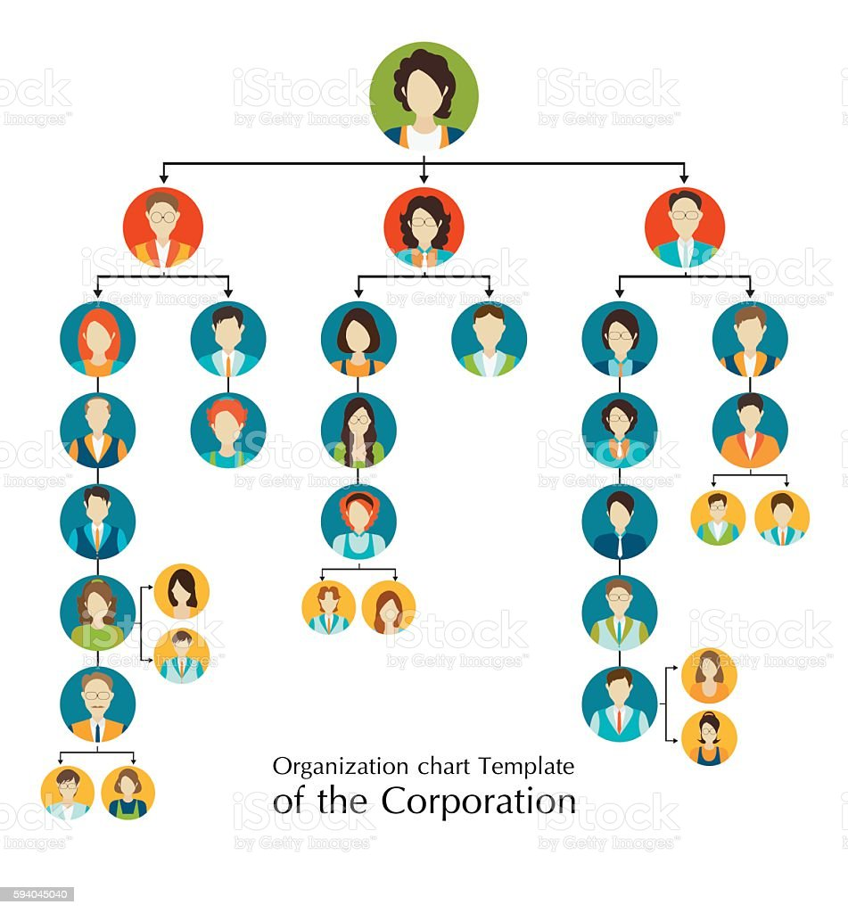 Organizational chart template of the corporation business hierarchy. vector art illustration