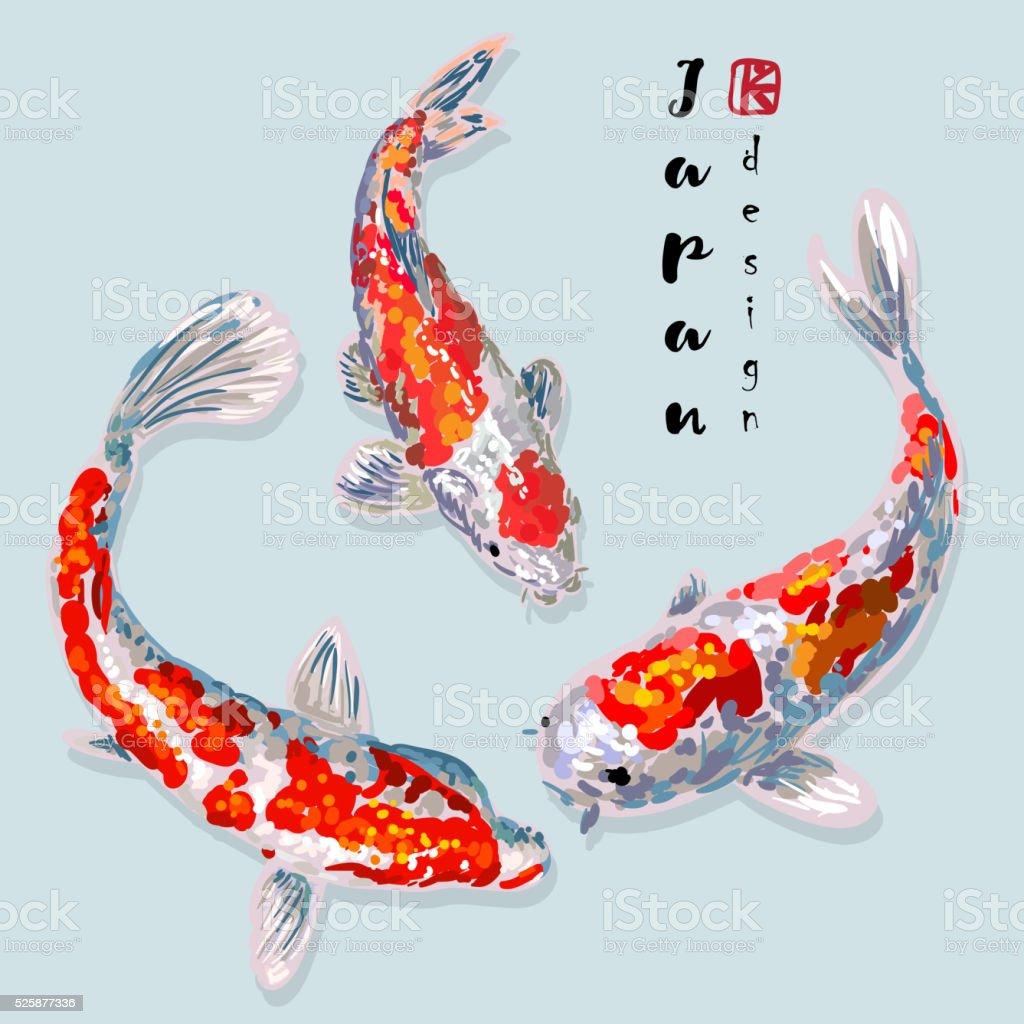 Oriental rainbow carp set vector art illustration