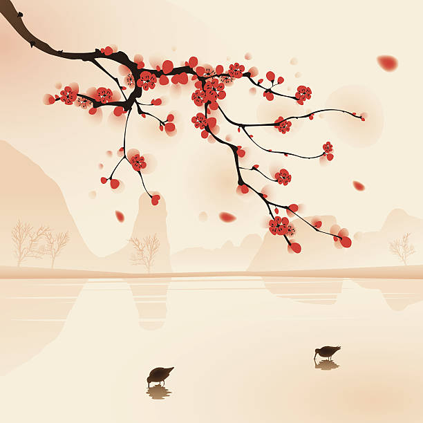 oriental style painting, plum blossom in spring Plum blossom above the water with birds drinking water. Vectorized brush painting. plum blossom stock illustrations