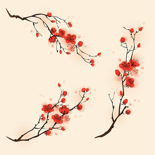 Oriental style painting, plum blossom in spring Plum blossom flowers in three different compositions. plum blossom stock illustrations