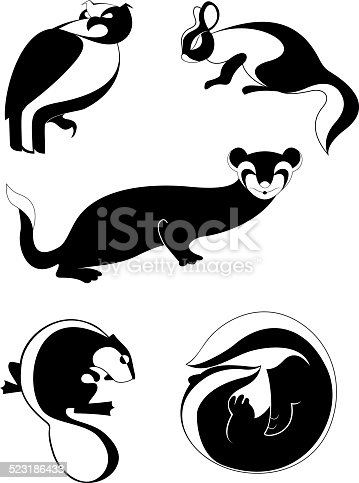 Original decor animal illustration