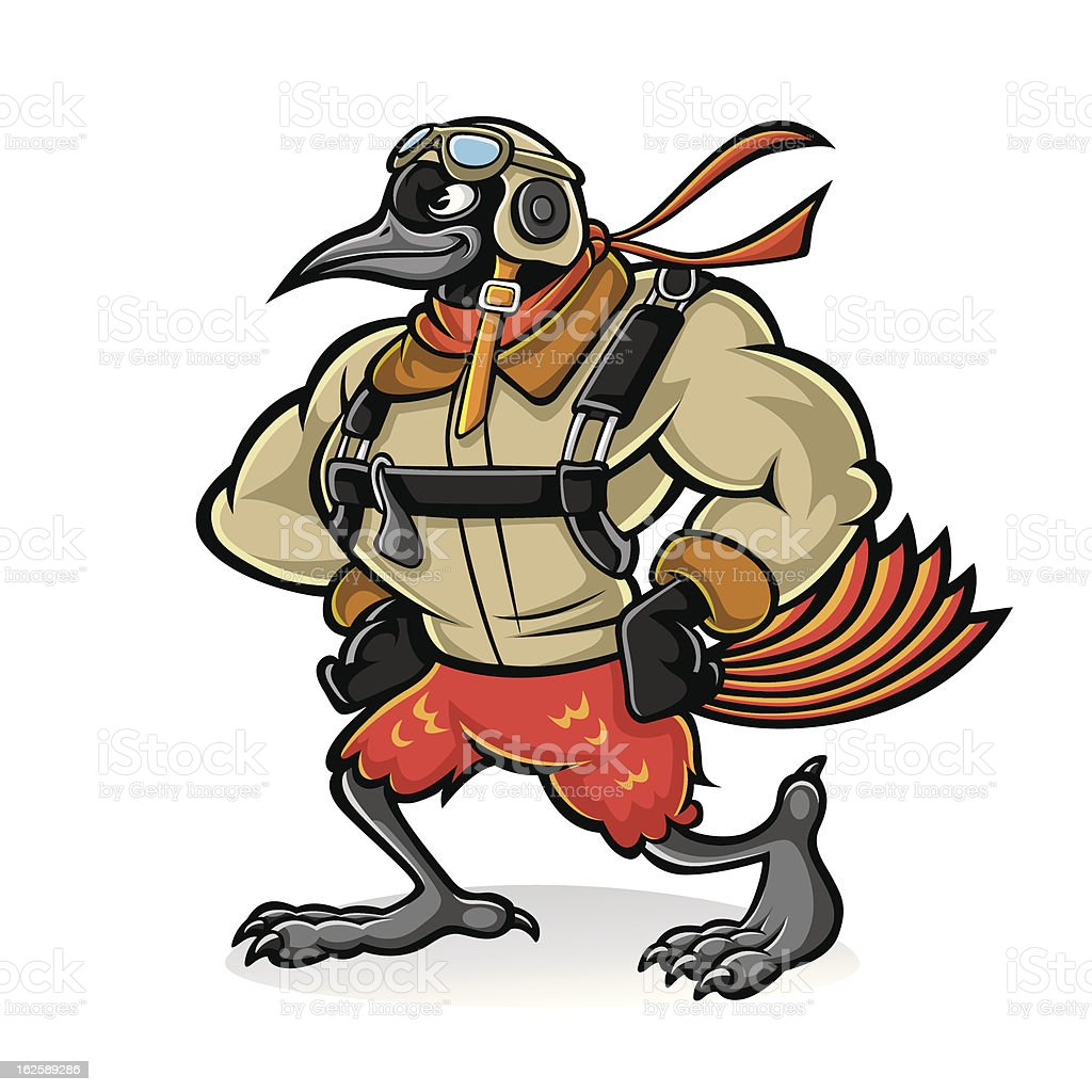 Oriole Bird Aviator royalty-free stock vector art