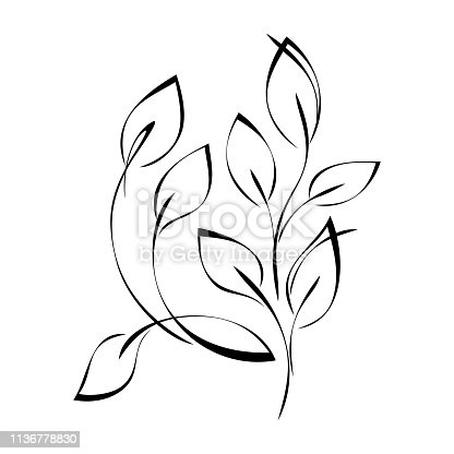 stylized twigs with leaves in smooth black lines on white background