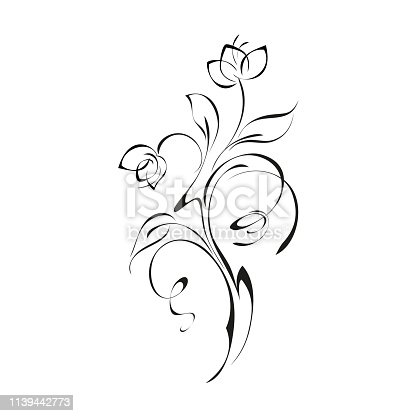 decorative twig with two flower buds on the stem with leaves and curls in black lines on a white background