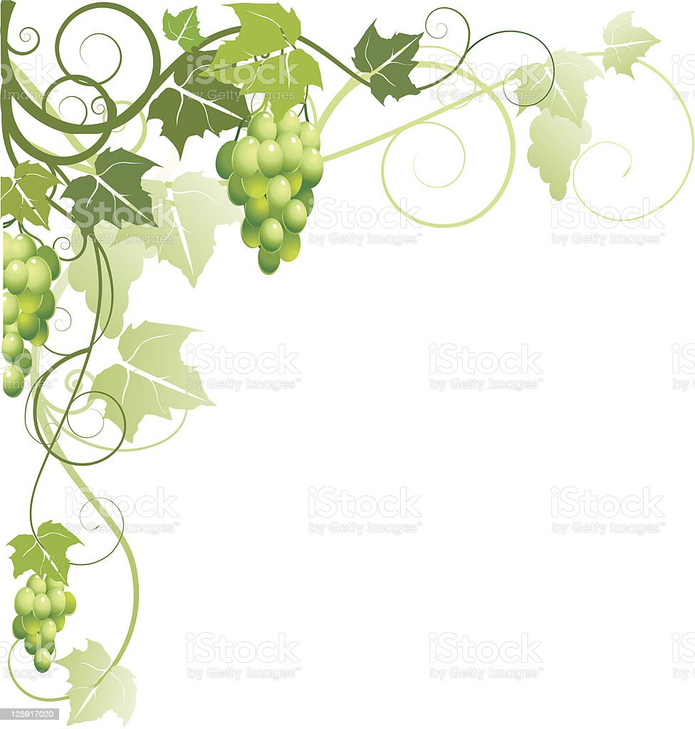 Ornament with grapes vector art illustration