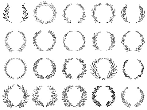 Ornamental branch wreathes. Laurel leafs wreath, olive branches and round floral ornament frames vector set