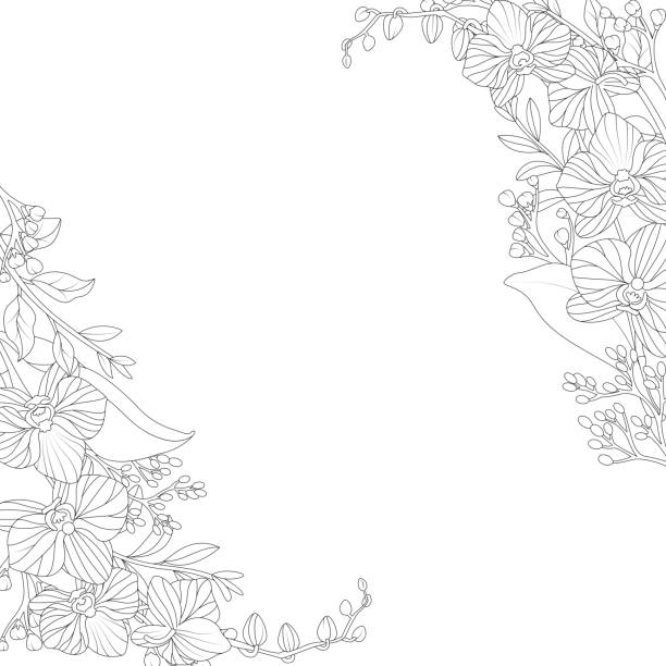 Ornamental flowers on white background Vector illustration of Ornamental flowers on white background orchid stock illustrations
