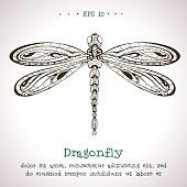 Ornamental hand drawn vintage vector Dragonfly.
