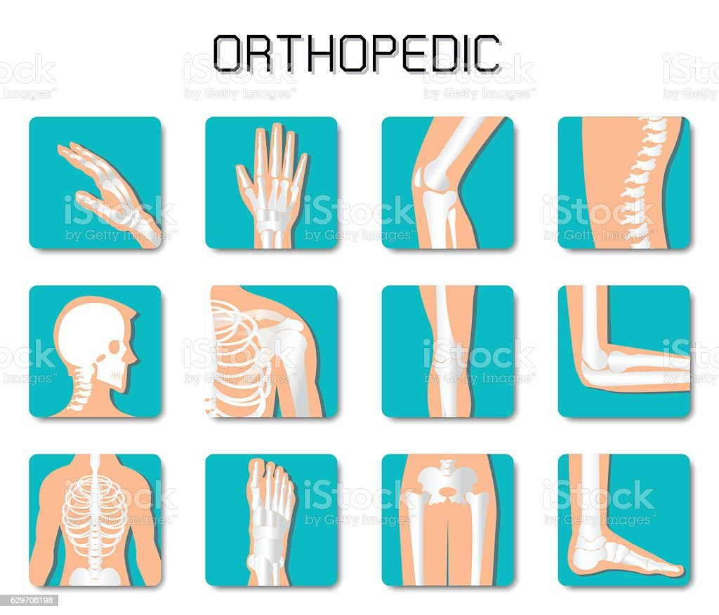 Orthopedic and spine icon set on white background. vector art illustration